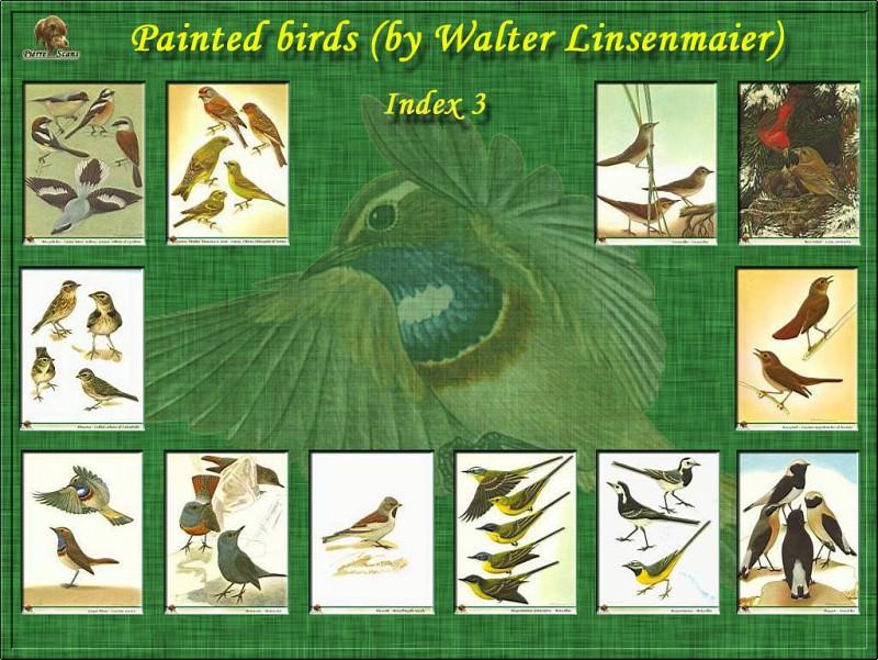 PO B2 27 Index 3. Walter Linsenmaier