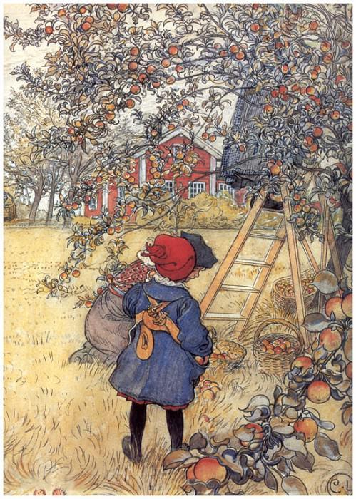 Сбор яблок (фрагмент), 1904-06. Карл Улоф Ларссон
