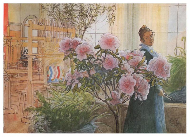 1906 Azalea watercolor. Carl Larsson