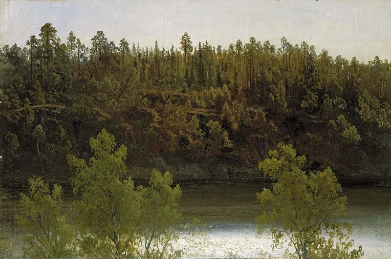 Swedish Lake. Study. Marcus Larson