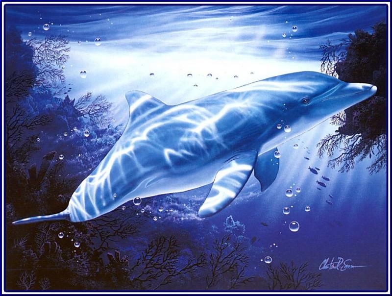 Виденье дельфина. Кристиан Риес Лассен