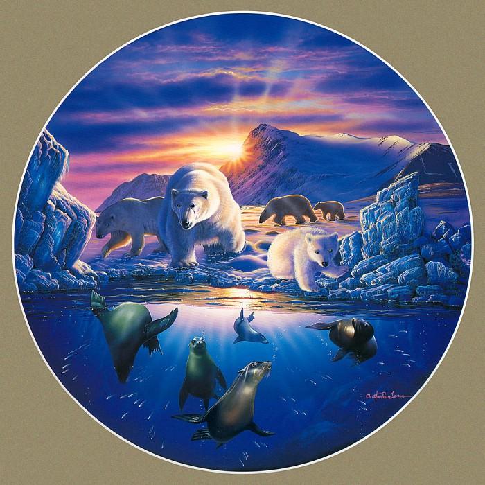 Arctic Odyssey. Christian Riese Lassen