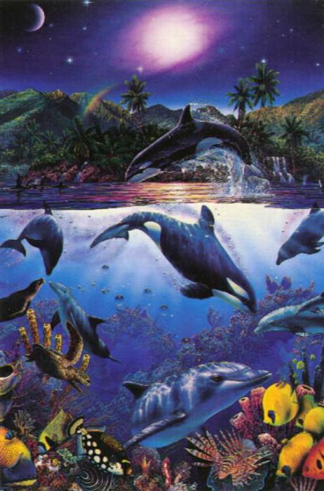 Rainbow Sea. Christian Riese Lassen
