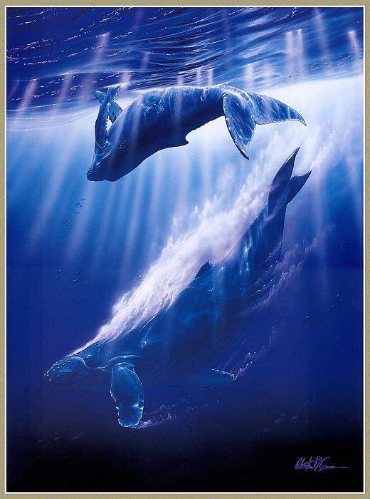 Песня китов. Кристиан Риес Лассен