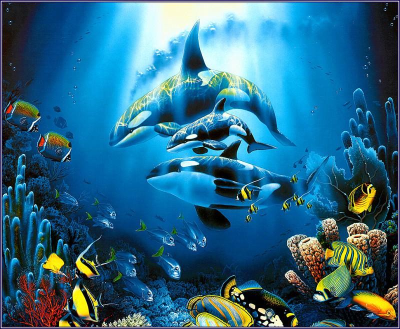 Sea Treasures. Christian Riese Lassen