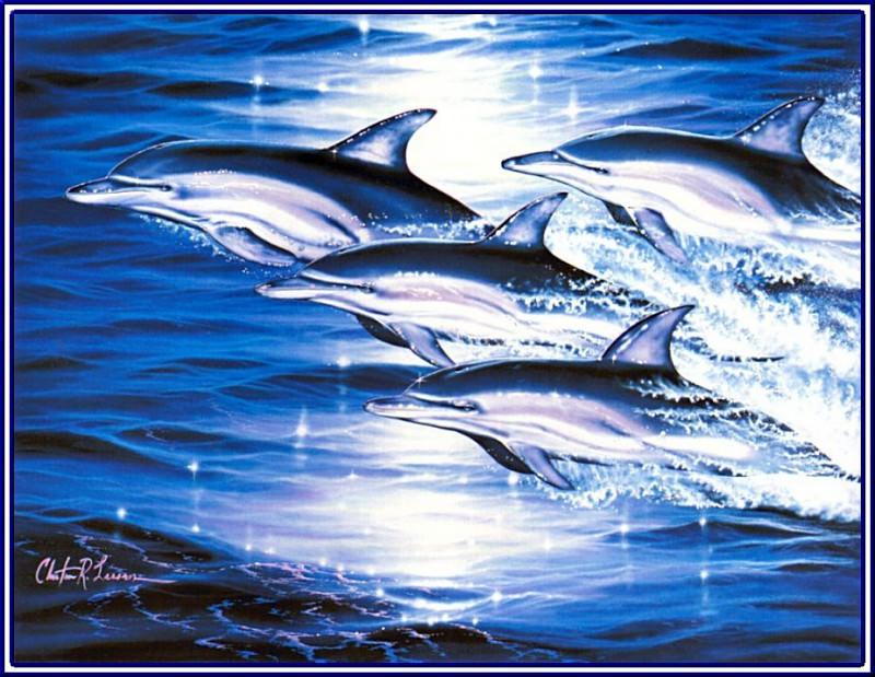 pa LassenCR 41 SeaFlight. Christian Riese Lassen