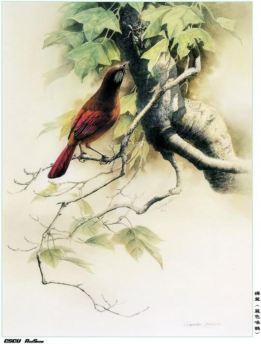 RedSnow CSCU Painting of ZengXiaoLian 06. Zeng Xiao Lian