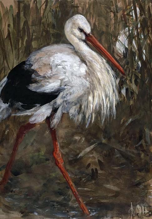 Stork in the Reeds. Adolph von Menzel
