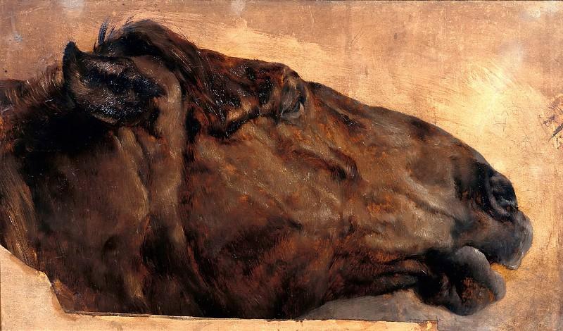 Horse Study. Adolph von Menzel