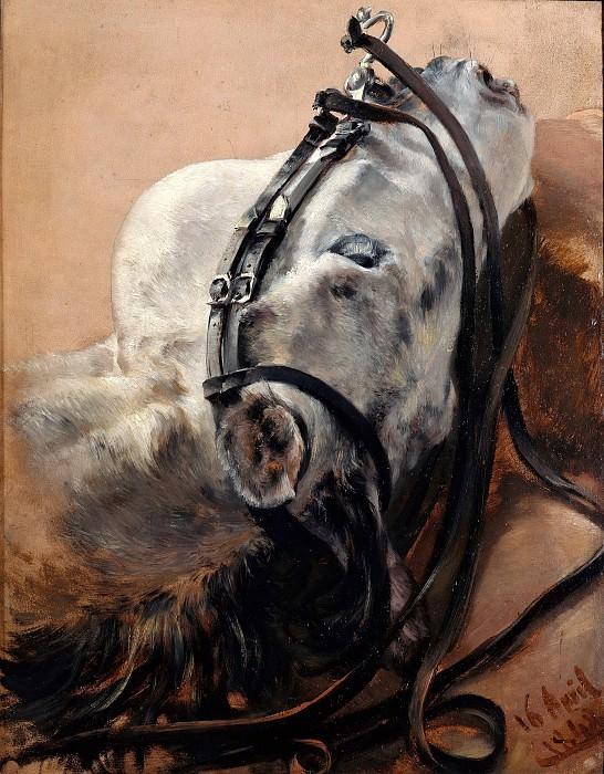 Этюд головы коня. Адольф фон Менцель