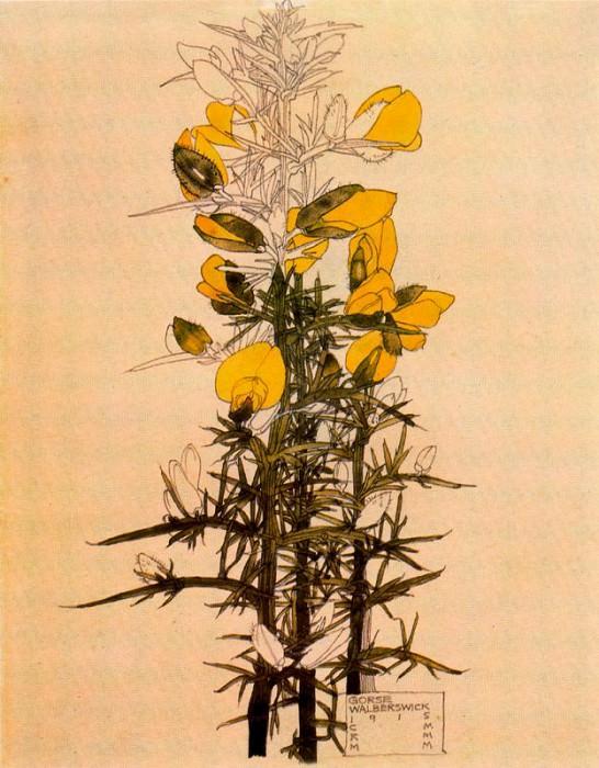 41548. Charles Rennie Mackintosh