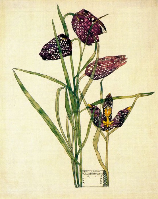 41554. Charles Rennie Mackintosh