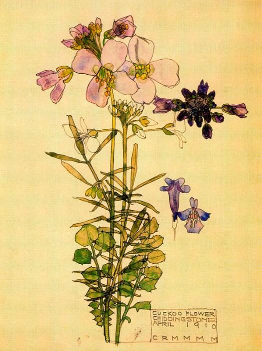 Кукушкин цвет. Чарльз Ренни Макинтош