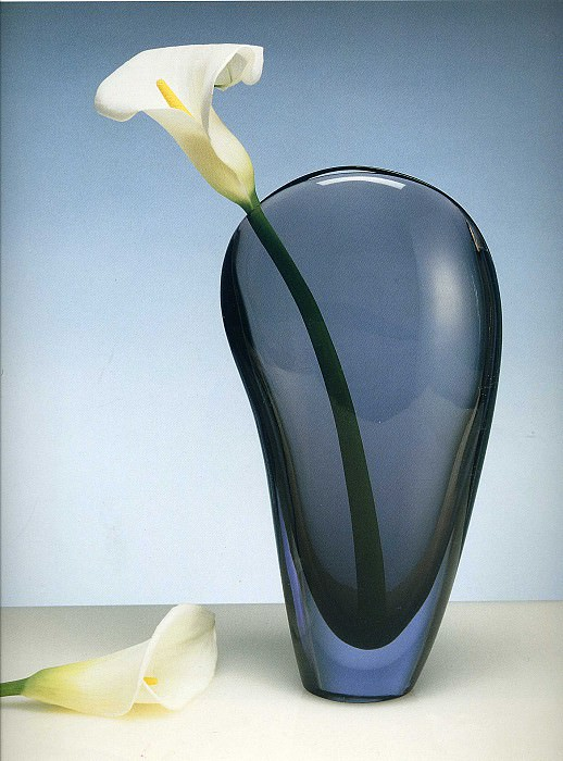art 222. Robert Mapplethorpe