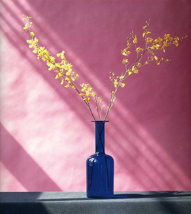art 198. Robert Mapplethorpe