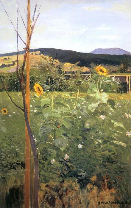 sunflowers. Jacek Malczewski