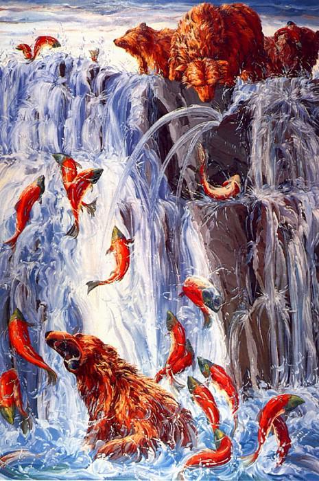 lrs-MillerMelissa-Salmon Run. Melissa Miller