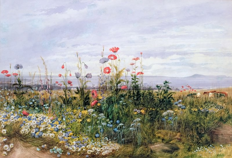 Wildflowers with a View of Dublin Dunleary. Andrew Nicholl