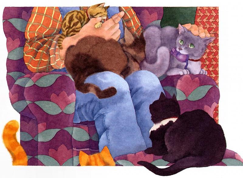 Naylor, Kathryn - Cat Park 10. Kathryn Naylor