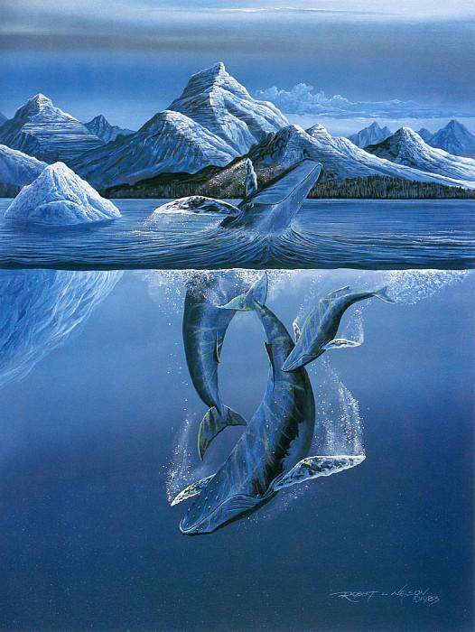Return to Alaskan Waters. Robert Lyn Nelson
