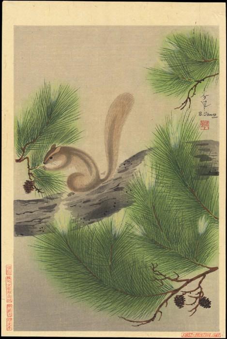 pic13695. Bakufu Ohno
