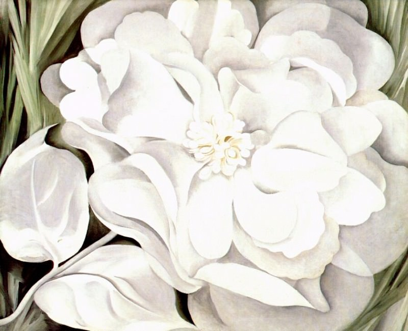 Цветок из белого коленкора, 1931. Джорджия ОКиф
