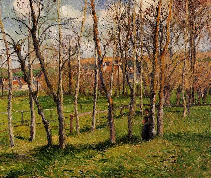 Meadow at Bazincourt. (1885). Camille Pissarro