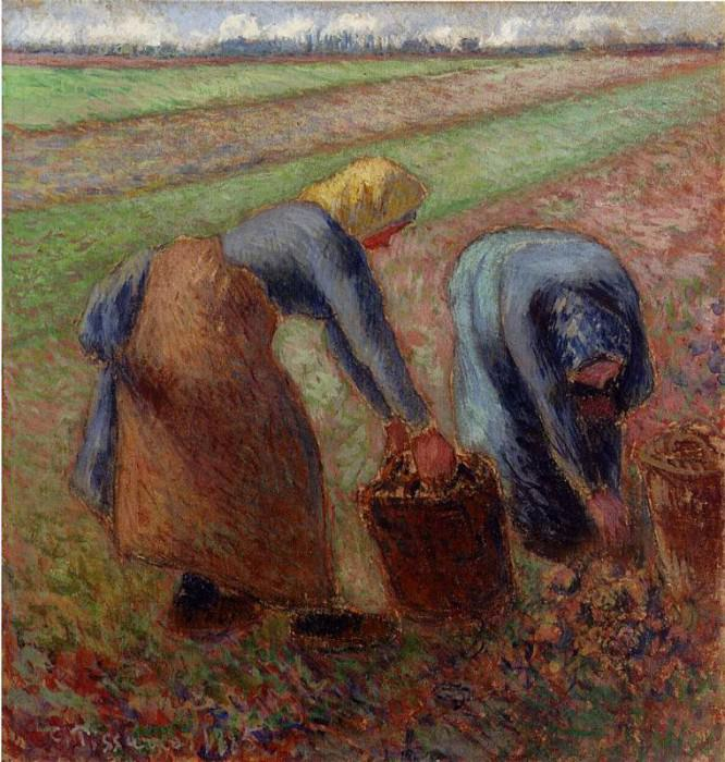 Potato Harvest. (1885). Camille Pissarro
