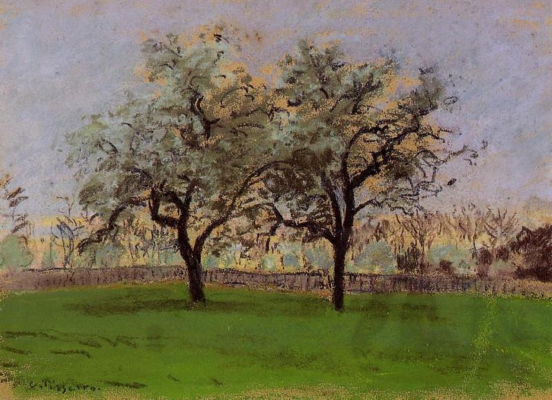 Apples Trees at Pontoise. (1872). Camille Pissarro