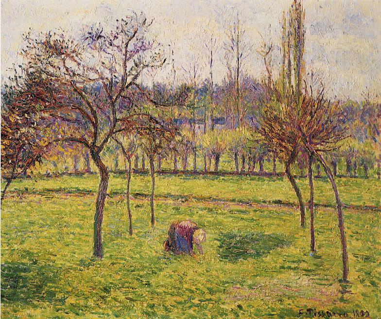 Apple Trees in a Field. (1892). Camille Pissarro