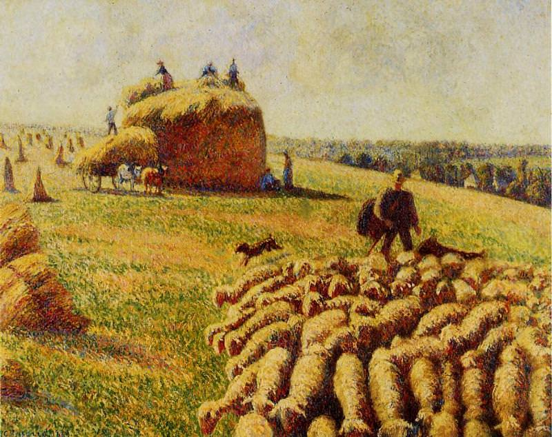 Flock of Sheep in a Field after the Harvest. (1889). Camille Pissarro