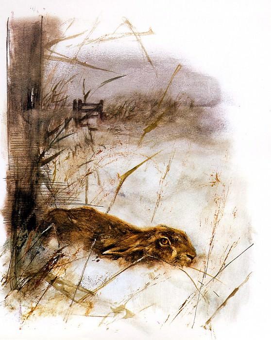 Дикая природа #38. Рин Поортвлит