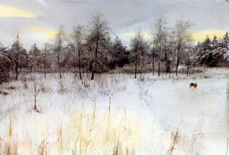nature #116. Rien Poortvliet