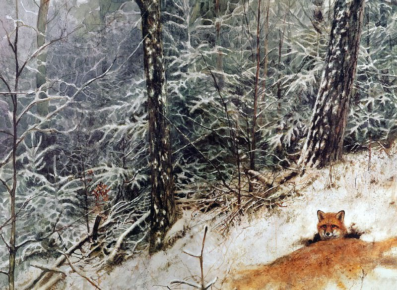nature #135. Rien Poortvliet