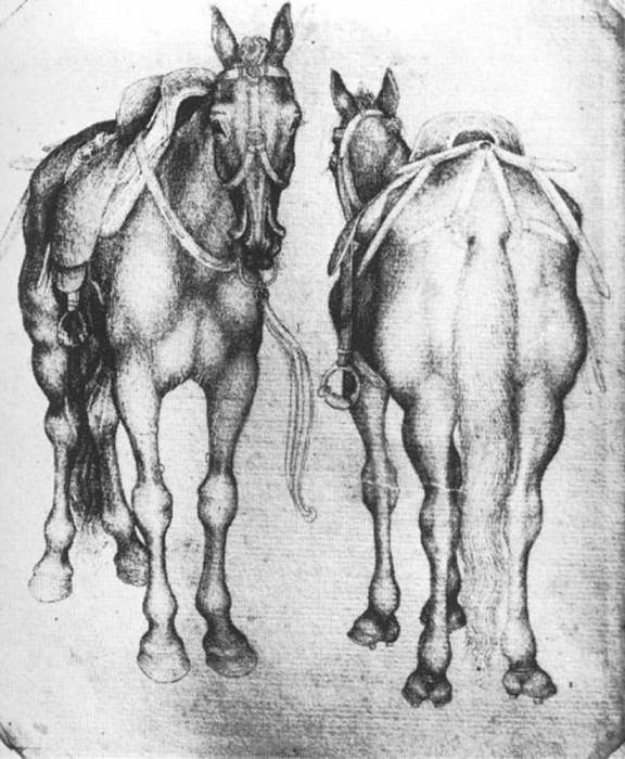 Horses. Antonio Pisanello