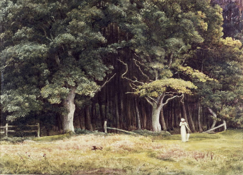 The Wooded Landscape. Edward John Poynter