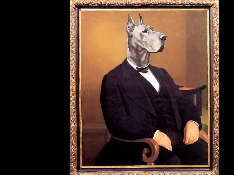 dog portraits lars hamlet knudsen. Thierry Poncelet