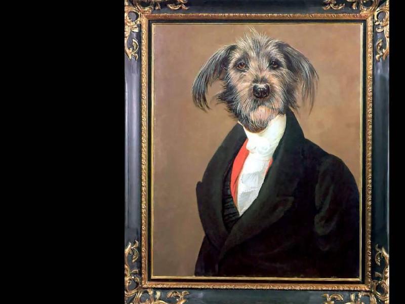 dog portraits georgi ablomolotovski. Thierry Poncelet