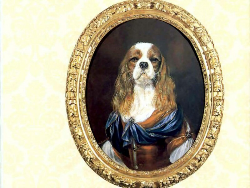dog portraits countess eugenie. Thierry Poncelet