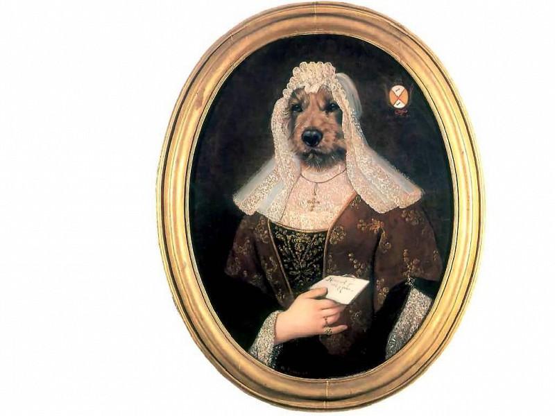 dog portraits frau irmtraud katzundhunde. Thierry Poncelet
