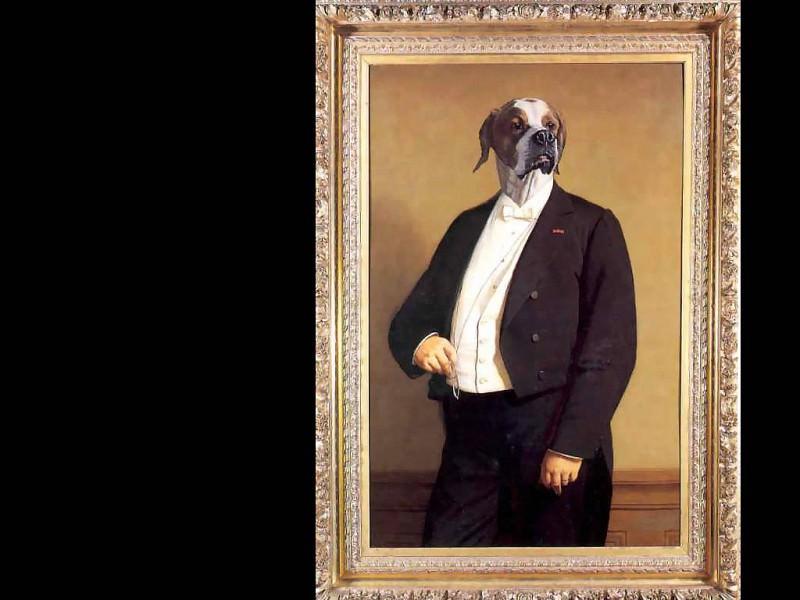 dog portraits sir harry pobjoy. Thierry Poncelet