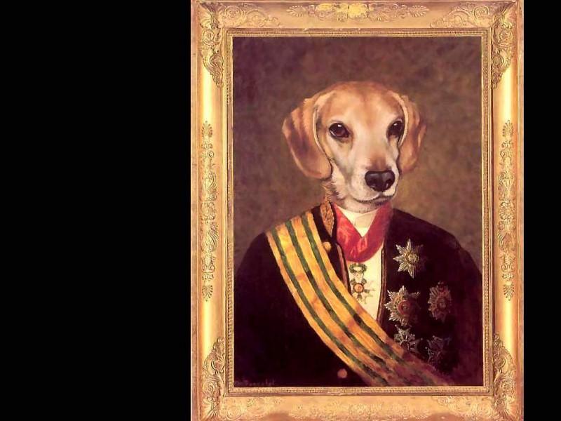 dog portraits baron lutz von wag. Thierry Poncelet