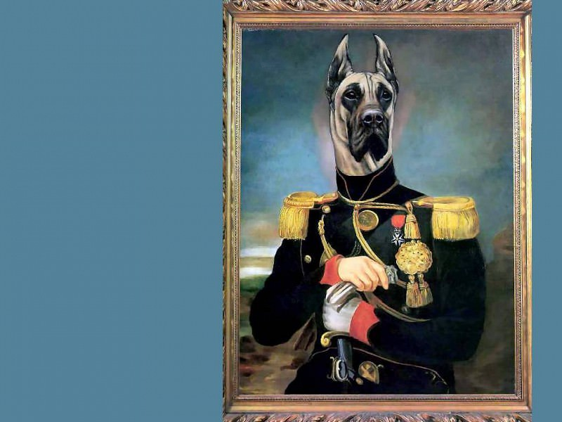 dog portraits king zoxtor of albania. Thierry Poncelet