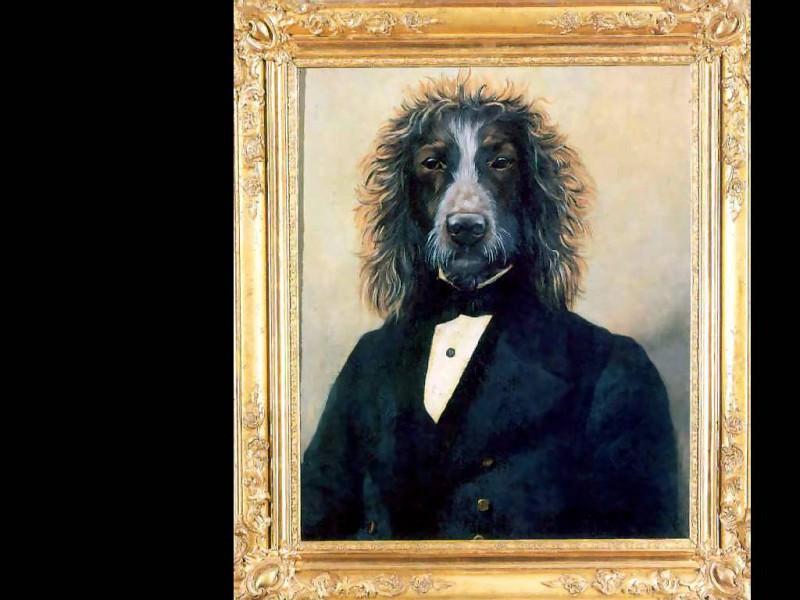 dog portraits yuri malishnikov. Thierry Poncelet