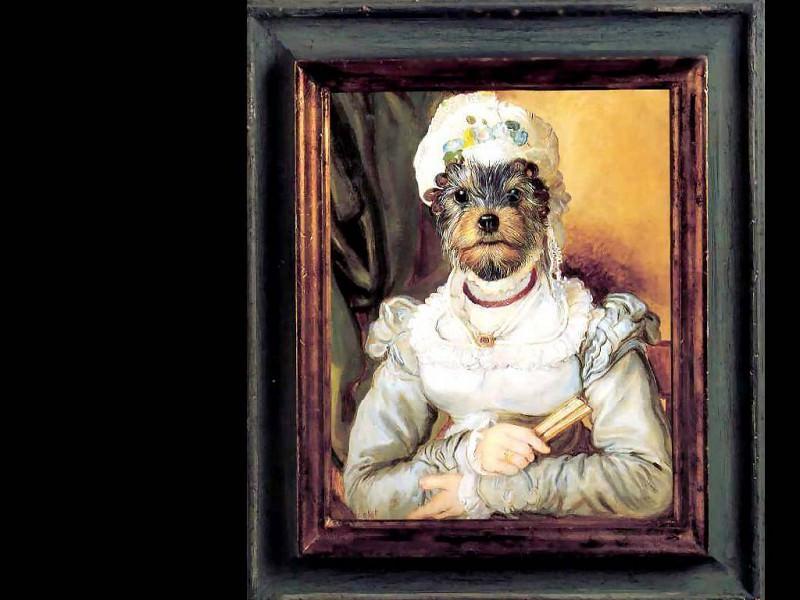 dog portraits amanda des moines. Thierry Poncelet