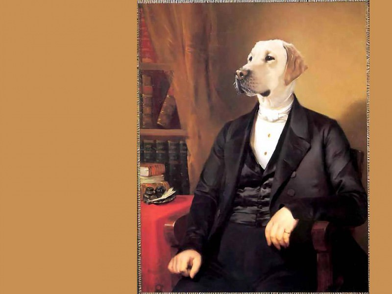 dog portraits sir rufus wilbraham. Thierry Poncelet