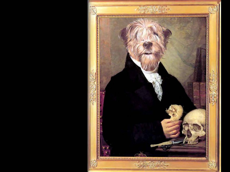 dog portraits august karlfried pfummel. Thierry Poncelet