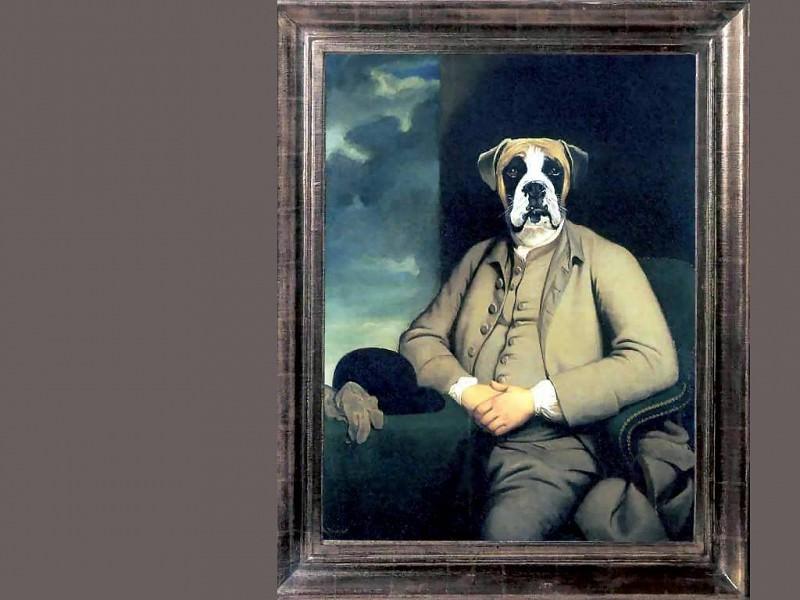 dog portraits le comte de montecrisco. Thierry Poncelet