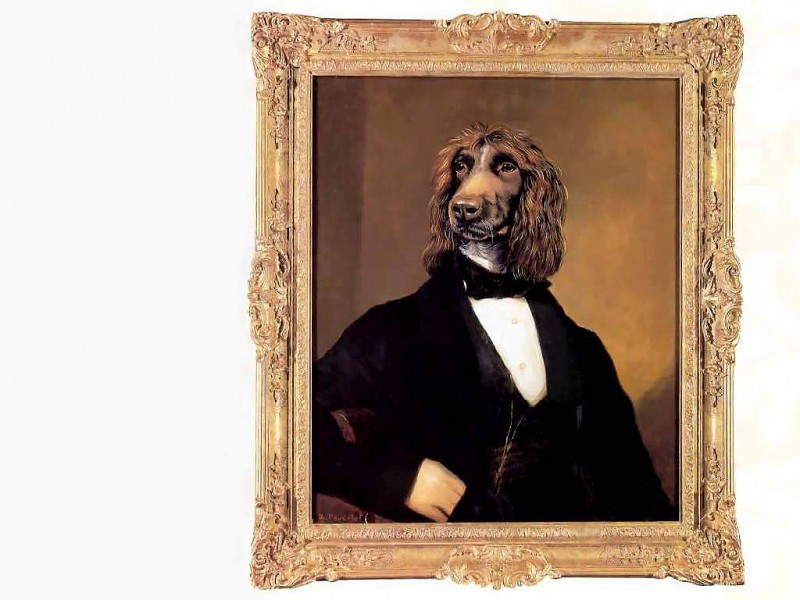 dog portraits maurice maurice. Thierry Poncelet