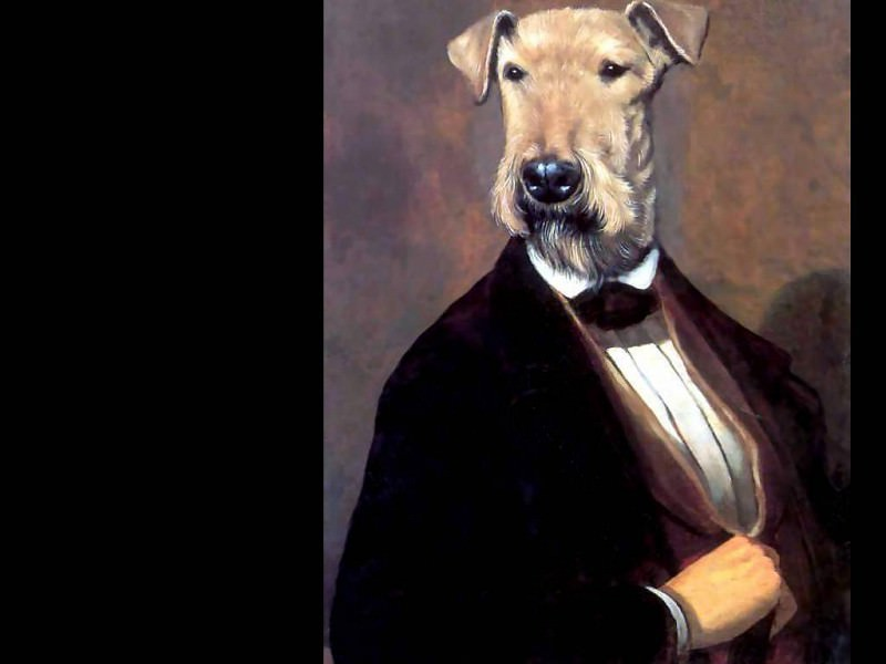 dog portraits the fifth earl of hearsay. Thierry Poncelet